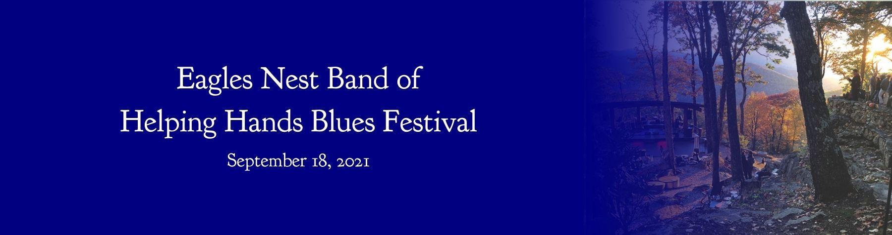 Nonprofit Blues Festival